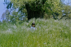 Lost in the grass (my daughter at 5)