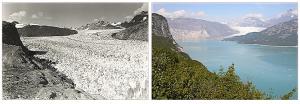 Muir Glacier 1941 / 2004
